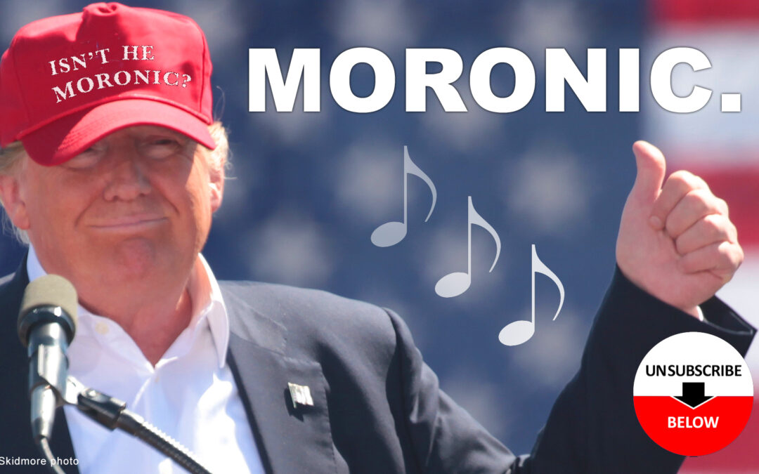Moronic: A Parody Song
